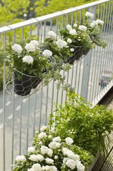 Amazing small balcony garden design ideas 37