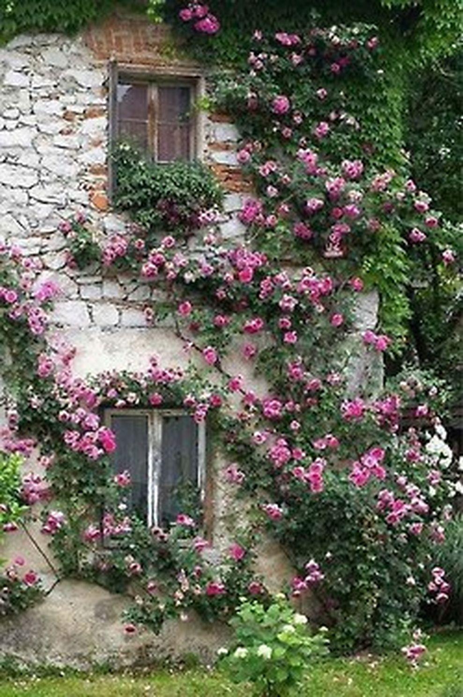 Beautiful french cottage garden design ideas 60