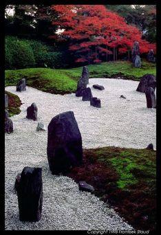 Beautiful modern japanese garden landscape ideas 04