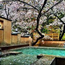 Beautiful modern japanese garden landscape ideas 29