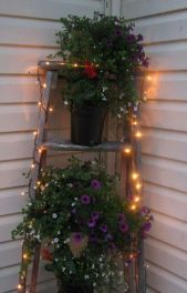 Creative front porch garden design ideas 59