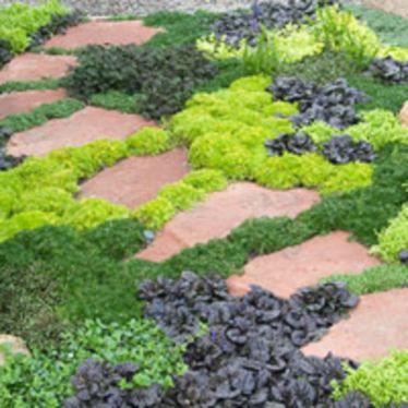 Creative garden design ideas for slopes 20