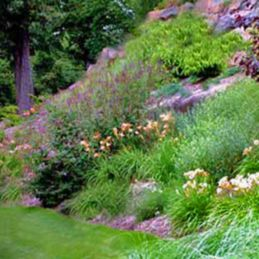 Creative garden design ideas for slopes 23