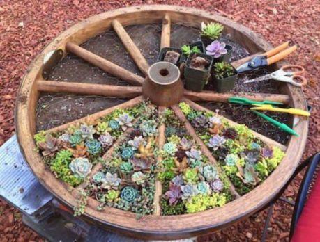 Cute and simple school garden design ideas 03