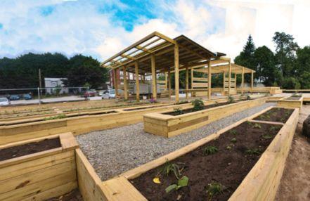 Cute and simple school garden design ideas 24