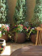 Cute and simple tiny patio garden ideas 81
