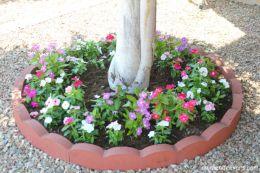 Inspiring small front garden ideas on a budget 04