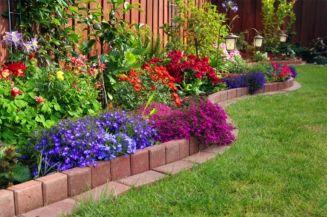 Inspiring small front garden ideas on a budget 25