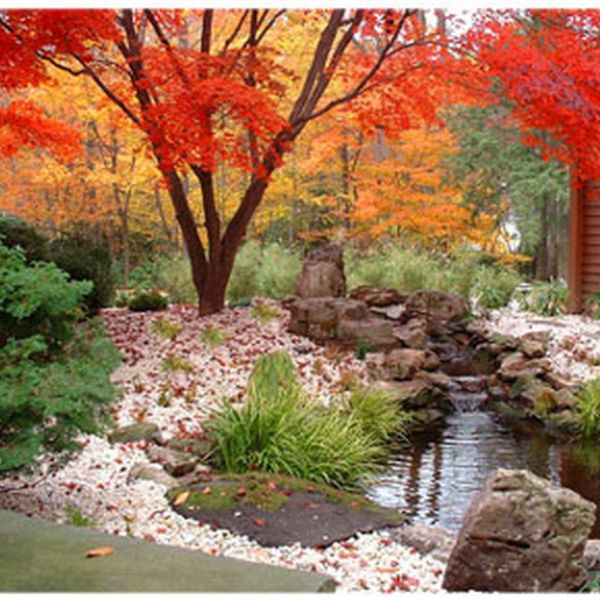 66 Inspiring Small Japanese Garden Design Ideas