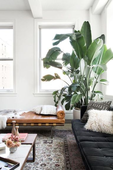 Living room ideas for an apartment 13