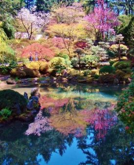Stunning japanese garden ideas plants you will love 05