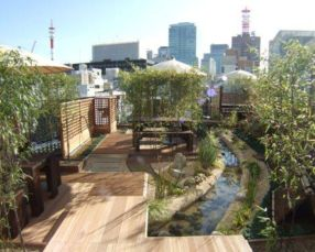 Stunning japanese garden ideas plants you will love 08