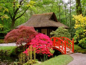 Stunning japanese garden ideas plants you will love 30