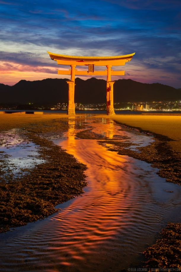 Stunning japanese garden ideas plants you will love 36