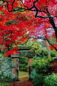 Stunning japanese garden ideas plants you will love 45