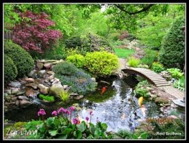 Stunning japanese garden ideas plants you will love 46