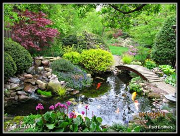 Stunning japanese garden ideas plants you will love 46