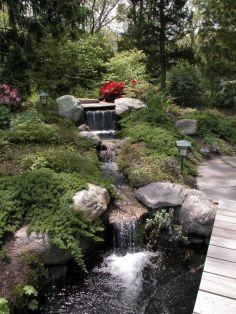 Stunning japanese garden ideas plants you will love 47