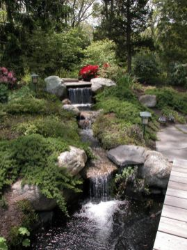 Stunning japanese garden ideas plants you will love 47