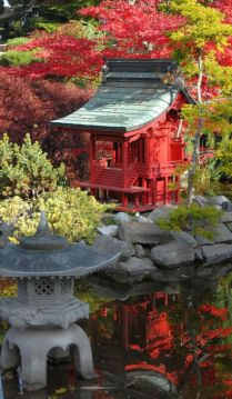 Stunning japanese garden ideas plants you will love 49