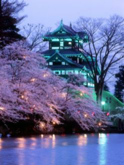 Stunning japanese garden ideas plants you will love 52