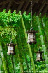 Stunning japanese garden ideas plants you will love 75