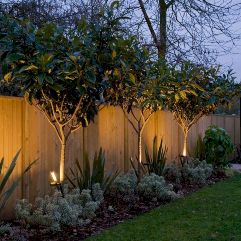 Diy backyard privacy fence ideas on a budget (18)