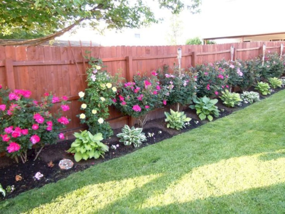 59 DIY Backyard Privacy Fence Ideas on A Budget