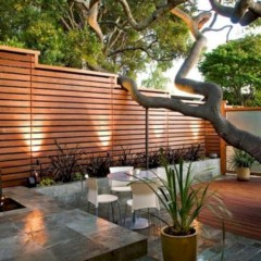 Diy backyard privacy fence ideas on a budget (3)