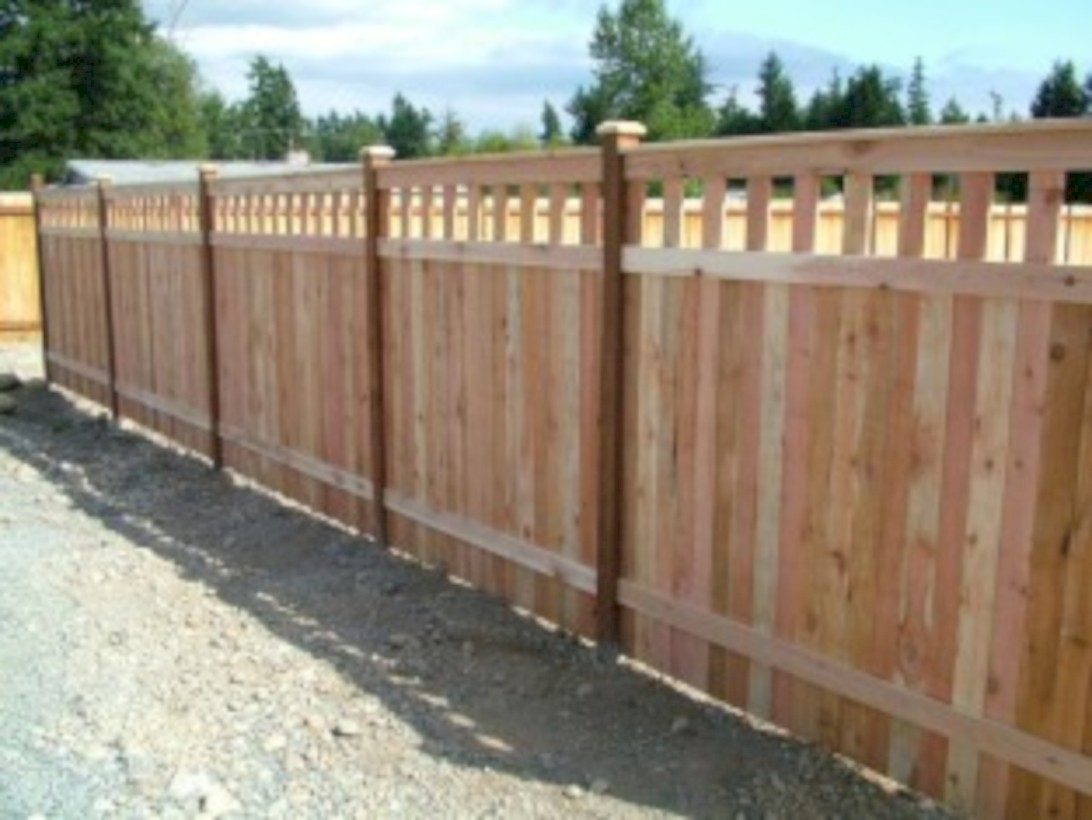 Diy backyard privacy fence ideas on a budget (9)