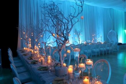 Spectacular winter wonderland wedding decoration ideas (21)