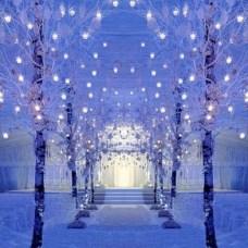 Spectacular winter wonderland wedding decoration ideas (24)