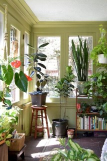 Stunning indoor plants ideas for your living room and bedroom 31