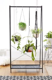 Stunning indoor plants ideas for your living room and bedroom 33