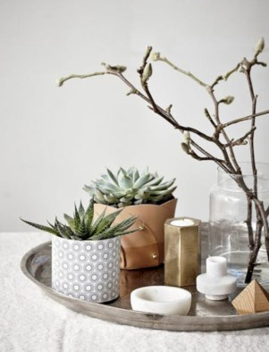 Stunning indoor plants ideas for your living room and bedroom 39