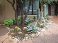 Beautiful rock garden landscaping ideas 20