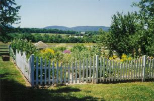 Easy and cheap backyard privacy fence design ideas 05