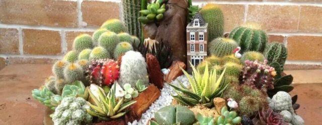 Creative diy indoor succulent garden ideas (33)