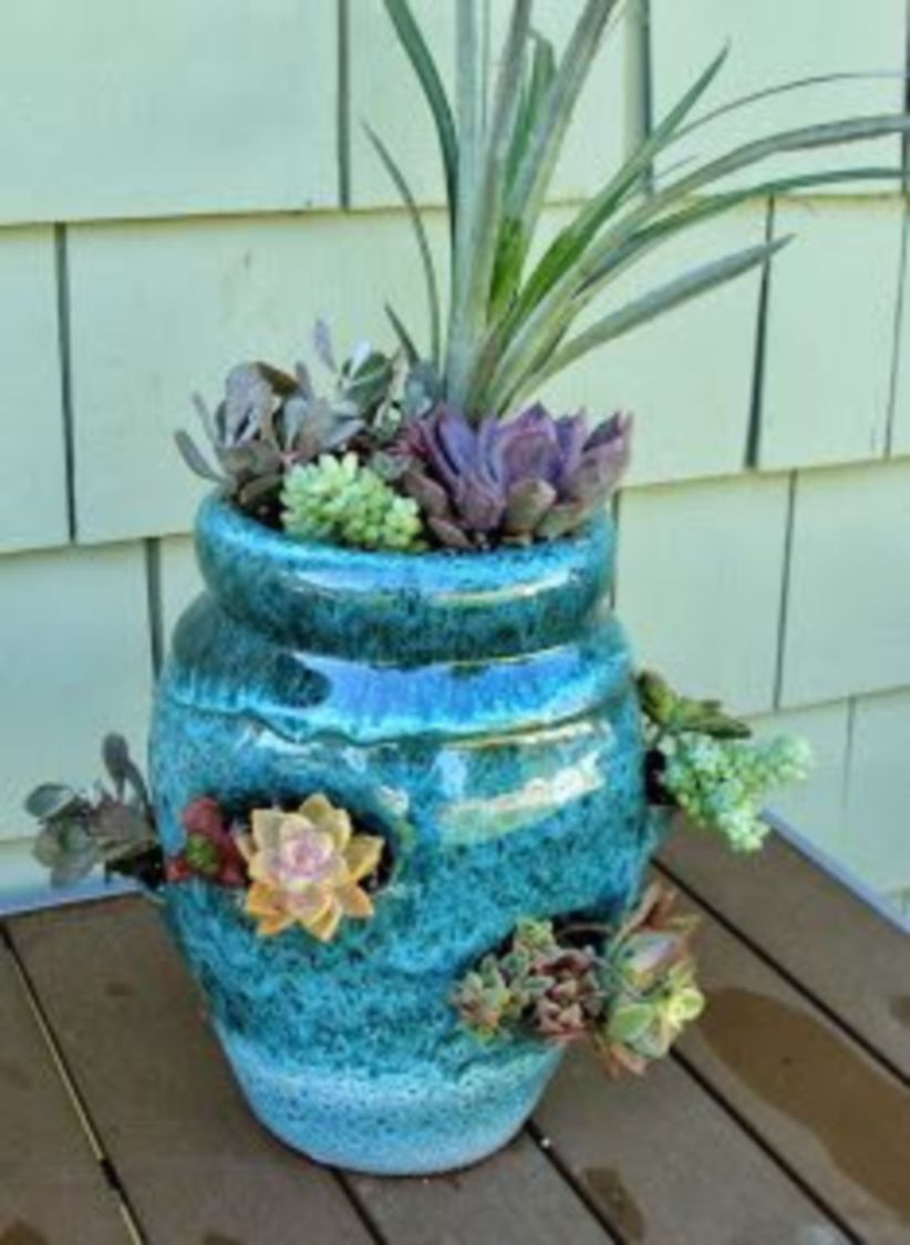 Creative diy indoor succulent garden ideas (36)