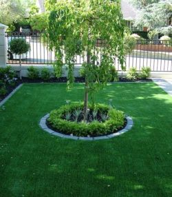 Best and beautiful tree ring planter ideas 13