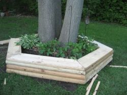 Best and beautiful tree ring planter ideas 17