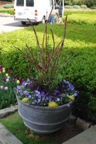Best and beautiful tree ring planter ideas 45
