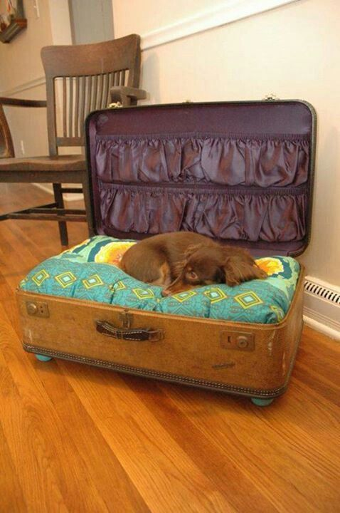 Admirable diy pet bed 03