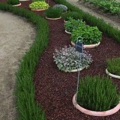 Awesome ways to creatively edge your garden 18