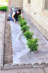 Awesome ways to creatively edge your garden 35