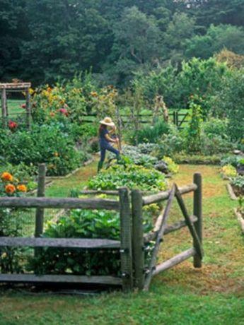 Amazing rustic garden decor ideas 11