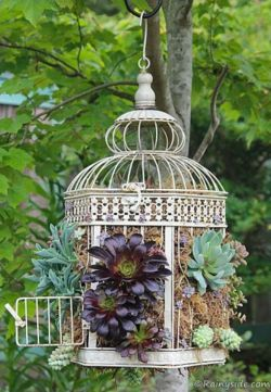 Brilliant garden junk repurposed ideas to create artistic landscaping 36