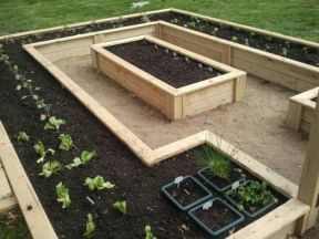 Elegant raised garden design ideas to inspire you 34