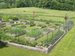 Elegant raised garden design ideas to inspire you 36