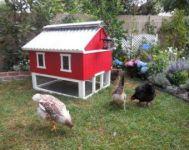 Extraordinary chicken coop decor ideas 02